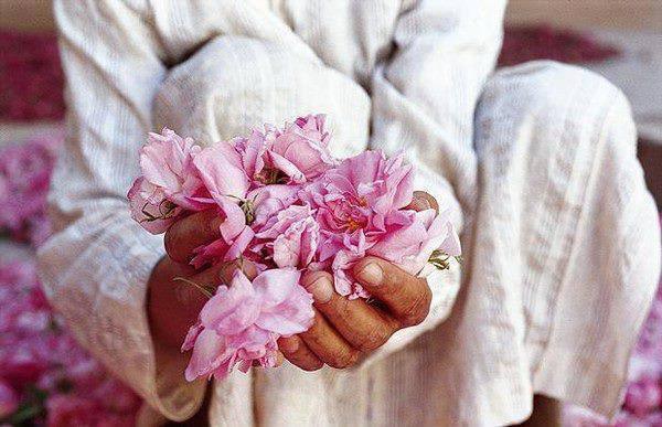 Gefühle mit Rosen ausgedrückt